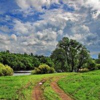 Прощалась синева с грозой... :: Лесо-Вед (Баранов)