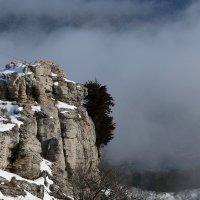 В облаках :: Nyusha
