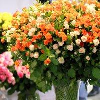 розы к празднику :: Олег Лукьянов