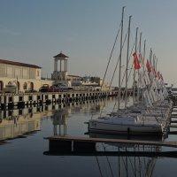яхты в порту :: Алексей Меринов