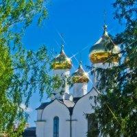 Купола храма Рождества Иоанна Предтечи. :: Виктор Евстратов