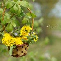 Вот такая цветочная корзиночка получилась)) :: Элен .