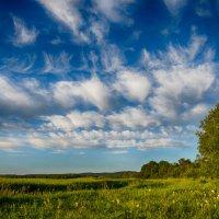 Июнь. Облака :: Константин Филякин