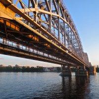 мост Александра Неского :: Елена