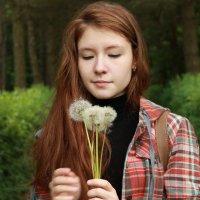 одуванчики :: Оксана Васильева