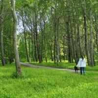 Прогулки в старом парке :: Елена Перевозникова