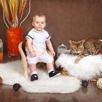 """Фотопроект""""Кошки"""" :: Оксана Зарубина"""