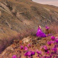 Горный цветок :: Наталья Панина