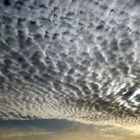 Небо :: Наталья Пономаренко