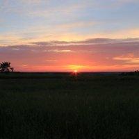 Летний закат :: Александр Ловкий