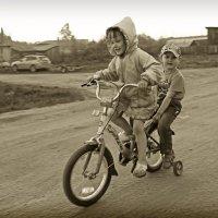Маленькие велогонщики :: Ирина Трифонова
