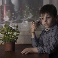 почему цветы вянут :: Оксана Циферова