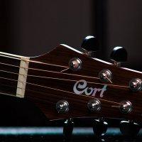 Guitar :: Евгений Рифиниус
