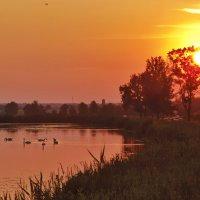 Лебединое Озеро :: Matej Turbić