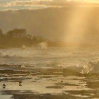 На рассвете в Estoril :: Дмитрий Бакулин