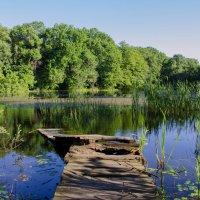и даже кладка дряхлая стала, озеро забыто всеми... :: Ксения Довгопол