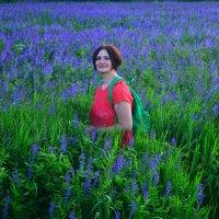 Сиреневое поле. :: Евгения Бакулина