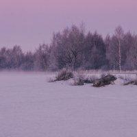 зимний рассвет :: Алексей Шеметьев