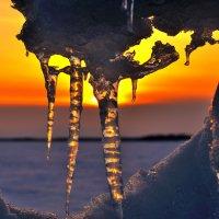 Слёзы зимы :: Николай Мальцев