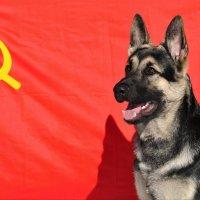 Made in USSR :: Юрий Белов