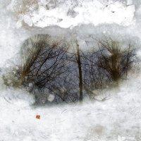 И снова весна! :: Валерий Оболенский