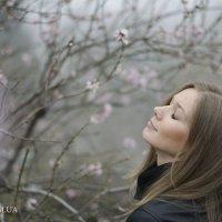 Весна-а-а-а... :: Юлия Варик