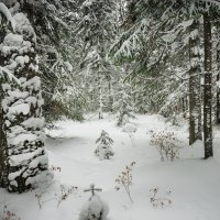 Рождественская :: Александр Иванов
