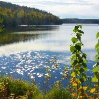 На озере Теренкуль :: Александр Садовский
