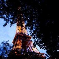 дыхание Парижа :: anait кевеян