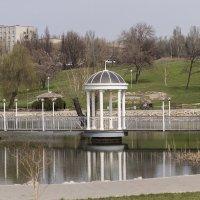Мост к сердцу тещи и свекрови. :: Сергей Давыденко