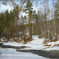 На горной  реке Уй  в апреле :: galina tihonova