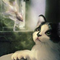 Про мечты..маленького котёнка.. :: Лана Минская