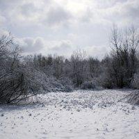зима весной :: vitali bezushka