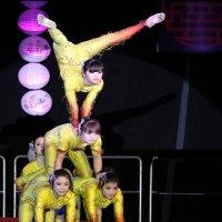 Китайский цирк :: Виктор Марченко