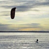 Поймавший ветер :: Алексей Пахомов