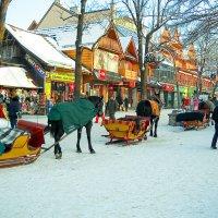 Горно-лыжный курорт Закопане :: Светлана Игнатьева