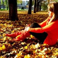 золотая осень :: Ольга Андрієнко