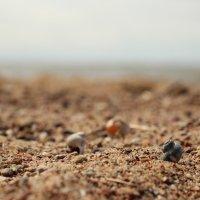 Пляж 2 :: Иван Веризуб