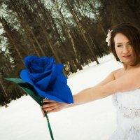 Цветочная зима :: екатерина иванова