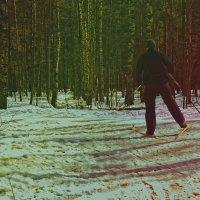 На лыжне.. :: Валентина Потулова