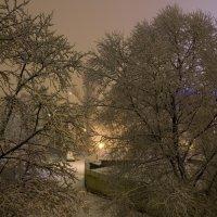 Светлая ночь :: Алексей Митин