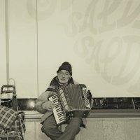 Уличный музыкант :: Vadim Gaja