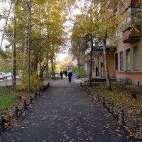 Гуляя по городу. :: Елизавета Успенская