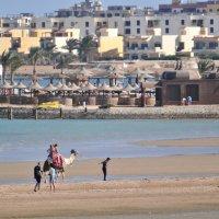 Египет :: Наташа Борцайкина