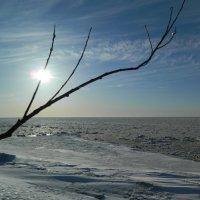 Апрельская Балтика :: Lina Liber