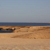 Египет Красное море :: Front Frontoff