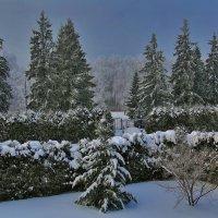 зима :: Елена Громова