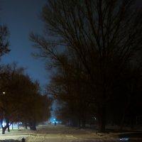 Зимнний вечер :: Alexandr Ch