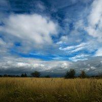 ...облака... :: Андрей Гр