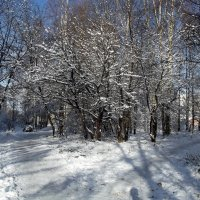 начало зимы :: Сергей Кочнев
